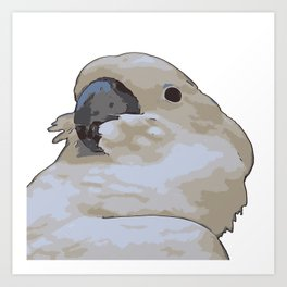 Chubby Blue Eyed Cockatoo Cacatua Ophthalmica Art Print