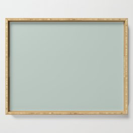 Palladian Blue Pale Soft Blue-Green Satin Solid Matte Colour Blocks Serving Tray