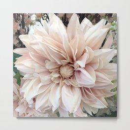 Dreamy Dahlia Cream Blush Pink Floral Decor Metal Print