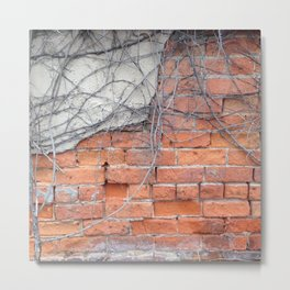 Old Brick and Vines Metal Print