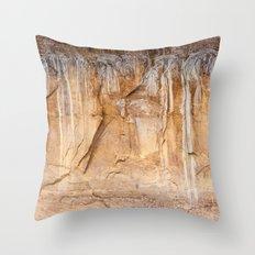 Time's Language (Zion National Park, Utah) Throw Pillow