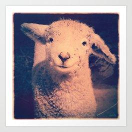 Innocence (Smiling White Baby Sheep) Art Print