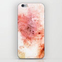 δ Arietis iPhone Skin