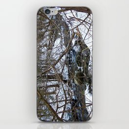 Winter Creek in the Forest iPhone Skin