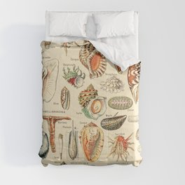 Seashell Diagram // Mollusques by Adolphe Millot XL 19th Century Science Textbook Artwork Comforters