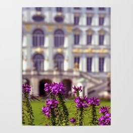 Flowers of castle Nympfenburg Poster