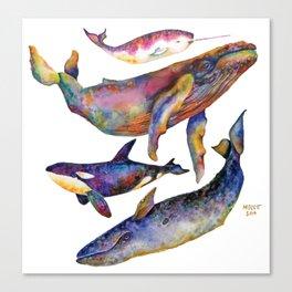 Whale Pyramid #2 Canvas Print