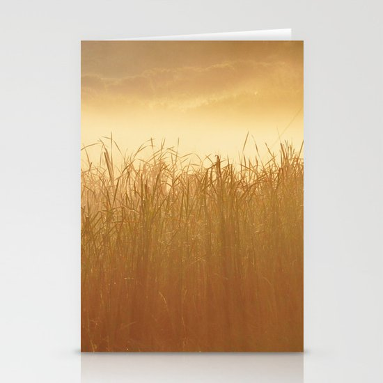 Field Grass in the Mist  2 Stationery Cards