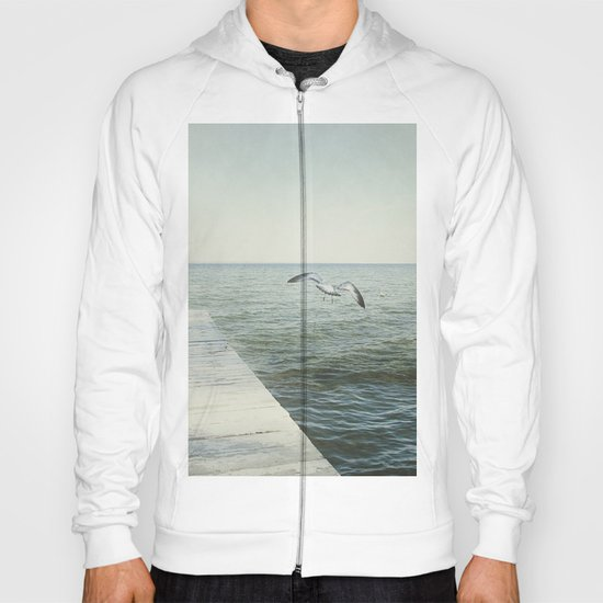 Take Flight Hoody