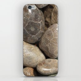 Petoskey Stones iPhone Skin