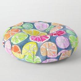 Citrus Painting Floor Pillow