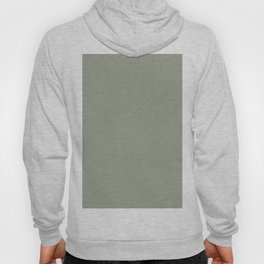 Sage x Simple Color Hoody