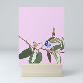 Splendid Fairy-wren Malurus splendens Mini Art Print