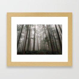 Foggy Wasteland Framed Art Print