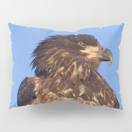 Golden Eagle on the Kenai Pillow Sham