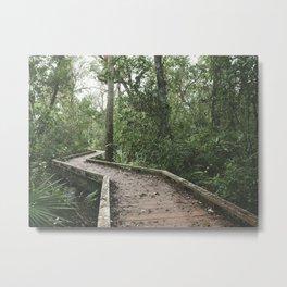 Caloosahatchee Creek Metal Print