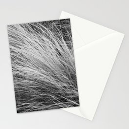 Grass Texture In Black And White Stationery Cards