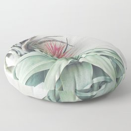 Air Plant Collection II Floor Pillow