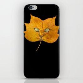 Autumn Cat-2 iPhone Skin