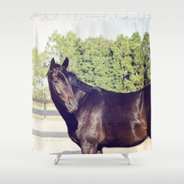 Bubba in Color Shower Curtain