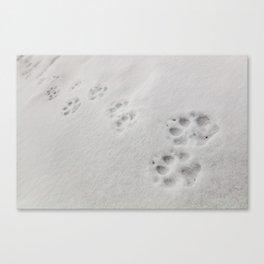 Yellow Stone - Wolf Tracks Canvas Print