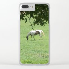 Peaceful Feeding Clear iPhone Case