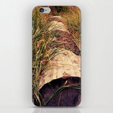 tucked away iPhone & iPod Skin