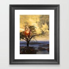 Tree in November sun Framed Art Print