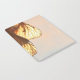 Cluster of lightened leaves Notebook
