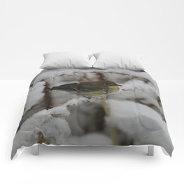 Yellow Rumped Warbler Comforters