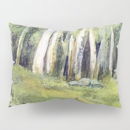 Woodland Landscape Watercolor Vermont Painting Birch Trees Spring Fields Pillow Sham