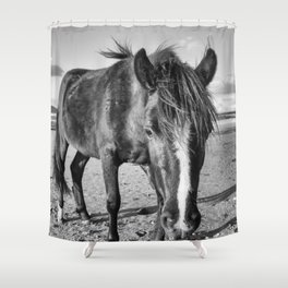 The black horse Shower Curtain