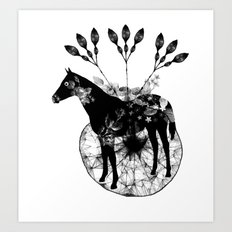 Black and white horse and the flowers Art Print