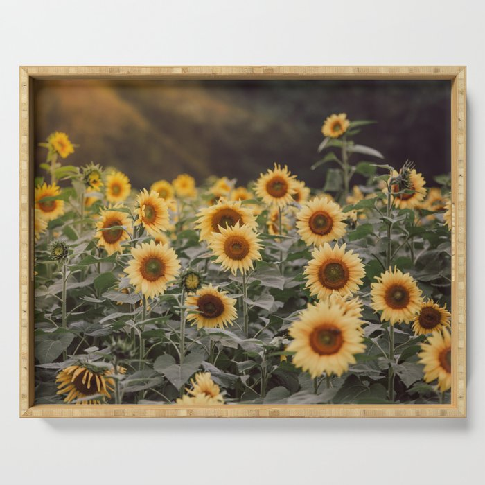 After the Rain (Sunflower Field I) Serving Tray