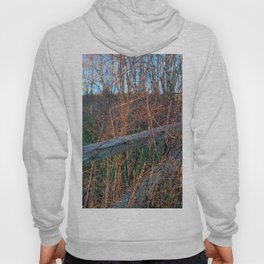 Straw Pi over fence Hoody