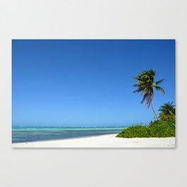 Crystal Clear Day on the Beach Canvas Print