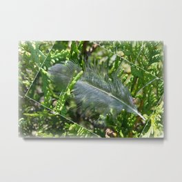 A stray feather Metal Print