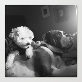 Marley&Sully Canvas Print
