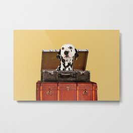 Dalmatian in suitcase - luggage with dog Metal Print