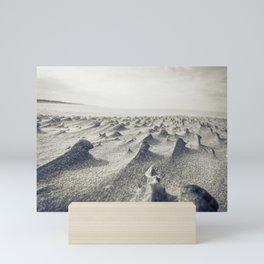 Tiny sand sculptures as wind erodes the beach around old shells Mini Art Print