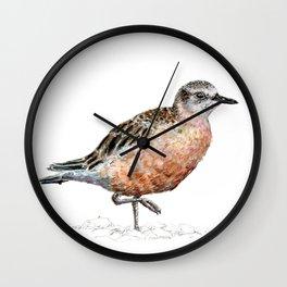 Mr Tūturiwhatu, New Zealand dotterel Wall Clock