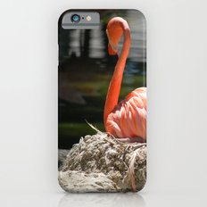 Sitting Flamingo iPhone 6s Slim Case