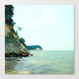 Fossil Beach Canvas Print