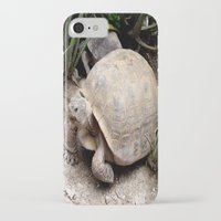 tortoise iPhone & iPod Cases featuring Tortoise by lennyfdzz