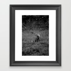 Fox Fire Floof Framed Art Print
