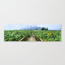 Sunflower Meets Mountain Canvas Print