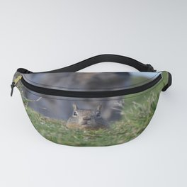 more ground than squirrel Fanny Pack