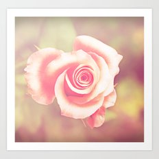 candy rose Art Print