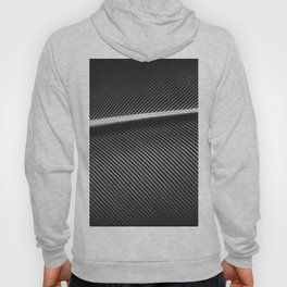 Elegant silver pigeon feather texture Hoody