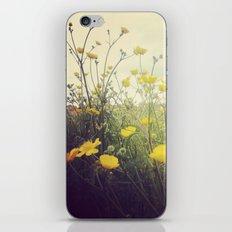 MayIdream iPhone & iPod Skin